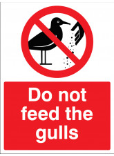 Do not feed the gulls
